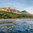 Environmental watchdog urged to probe Canada's 'regulatory failure'