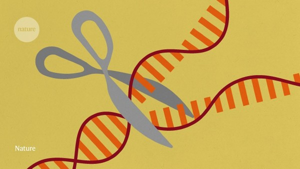 Trove of CRISPR-like gene-cutting enzymes found in microbes