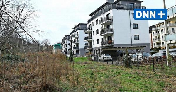 Wohnungsbau in Dresden: Und täglich grüßt der Leutewitzer Park