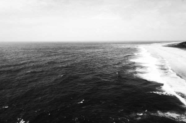 Ocean, 2021