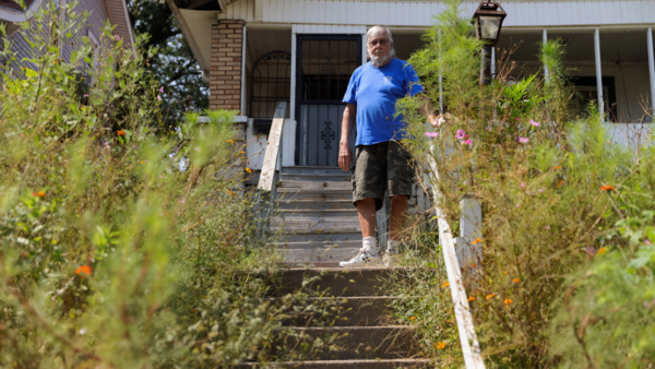 Wildflowers or weeds? Under Kansas City code, it's a matter of management