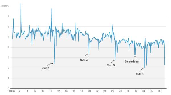 Grafiek via Datawrapper
