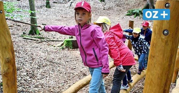 Heringsdorf auf Usedom: Erster Kinderheilwald in Europa eröffnet