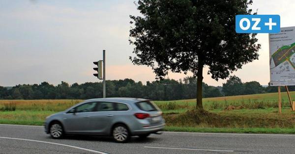 Gewerbe im Landschaftsschutzgebiet? Naturschützer kritisieren Pläne in Selmsdorf