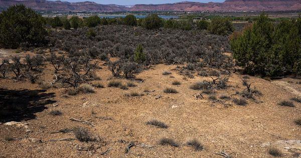 Former Utah lawmaker plans to build a luxury golf course in the desert, and locals are not pleased