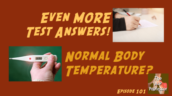 Even MORE Test Answers | Normal Body Temperature? | TAPP 101