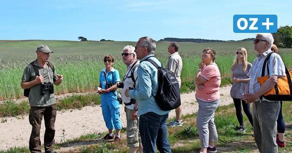Woche der Nachhaltigkeit auf Rügen: Das wird für Interessierte angeboten