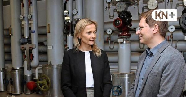 Grüne und CDU setzten Pelletheizung für Bad Bramstedter Gymnasium durch