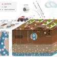Good for groundwater – bad for crops? Plastic particles release pollutants in upper soil layers