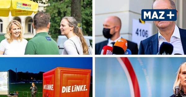 AfD-Zonen, grüne Hochburgen, SPD-Land: Was die Prozente über das Wahlverhalten in Potsdam verraten
