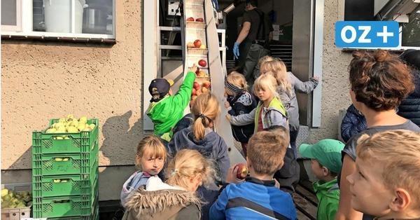 Griebenow: Wo aus 800 Kilogramm Schulgartenäpfeln leckerer Saft wird