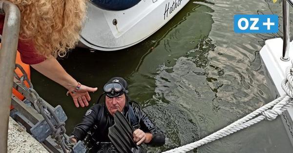 Mit Salto ins Hafenbecken: Stralsunds Kanaltaucher findet fast jeden verlorenen Schatz