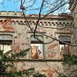 Der morbide Charme des Verfalls – das Schloss Thierbach