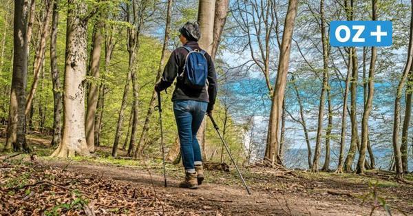 Wandern, Radeln, Drachensteigen: So schön ist der Herbst auf Rügen