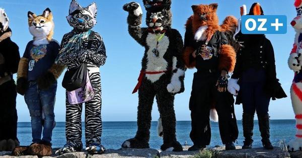 Riesige Tierfiguren am Kap Arkona: Das steckte hinter der Aktion