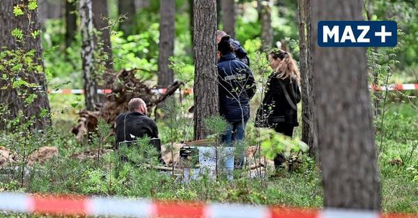 Knochen im Wald: Polizei hat neue Erkenntnisse