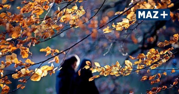 So wird das Wetter im Oktober in Teltow-Fläming und Dahme-Spreewald