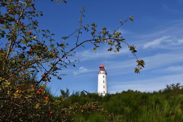 Herbstblick am Dornbusch (Foto: Jana Hobe)