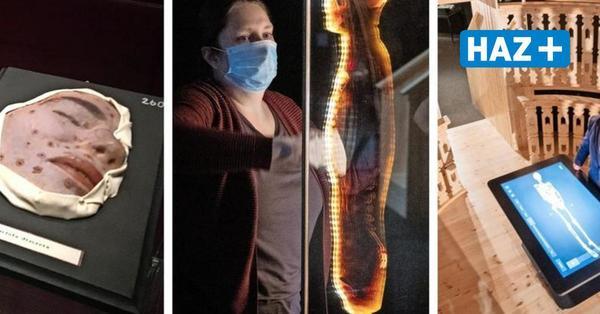 Zwischen Pest und Corona - Ausstellung in Hildesheim erkundet die Geschichte der Seuchen