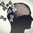 Does a Vitamin Deficiency in the Brain Lie Behind Huntington's Disease?