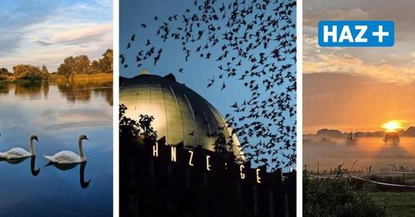 Leserfotos: Hier zeigt sich der Herbst von seiner schönsten Seite
