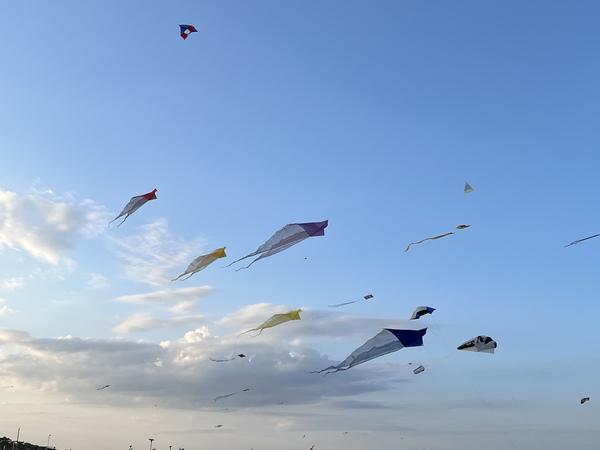 Flying kites in Cervia