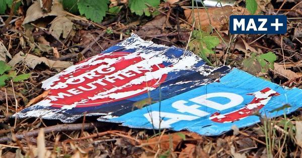 Austritte, Spaltung und ein Skandal: Die AfD in LDS zerlegt sich