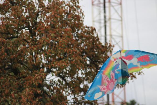 Ein beliebter Ort zum Drachensteigen: der Funkerberg in KW. Foto: Nadine Pensold