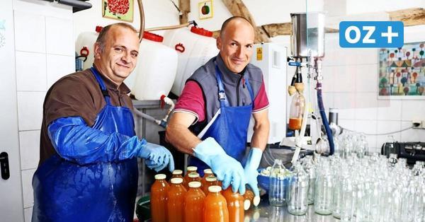 Hochbetrieb in Mosterei in Rethwisch: So kommt der Apfel in die Flasche