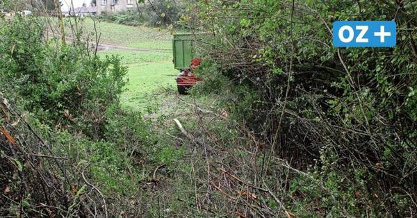 Erntehelfer stirbt bei Traktorunfall nahe Mallentin: Landwirt unter Schock