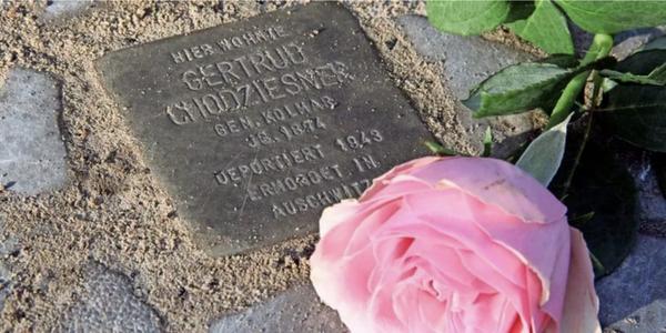 Eine Rose liegt am Stolperstein im Gedenken an Gertrud Kolmar in Falkensee. (Foto: Marlies Schnaibel)