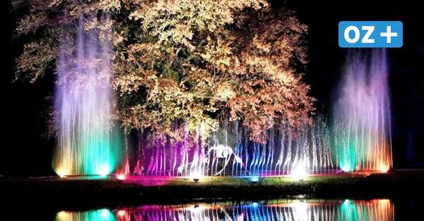 Genuss, Shopping und Musik: Das gibt es bei der Kulturnacht in Bad Doberan zu erleben