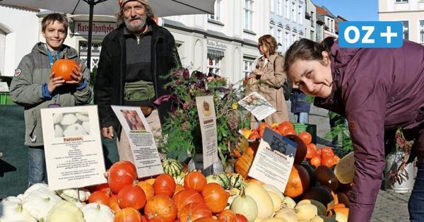 Das ist am Wochenende in Greifswald los: Theater, Bustour und ein Erntedankmarkt