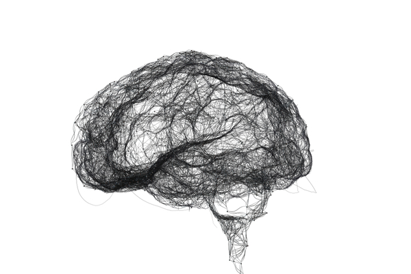 The 10-Percent-of-Your-Brain Myth That Just Won't Die   Discover Magazine