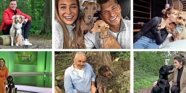 Welthundetag mit Hannovers Bosselmann, Ahmetovic, Lina Larissa Strahl