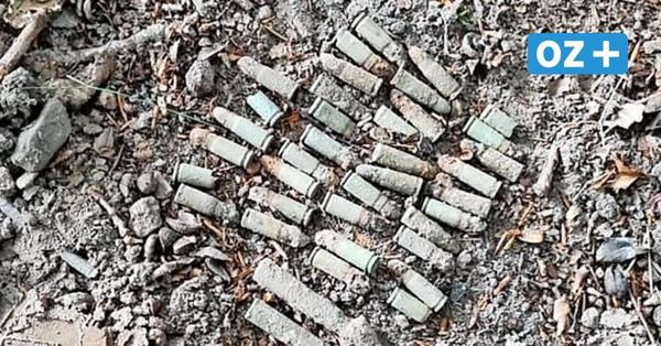 Schlemmin: Munition im Wald entdeckt