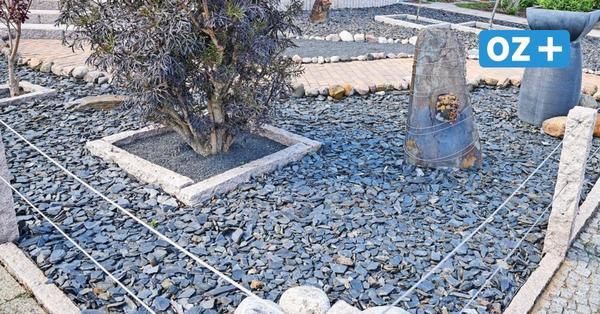 Bad Doberan geht gegen Schottergärten vor