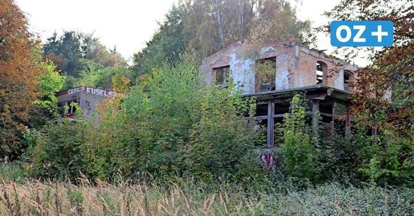 Von Villa Baltic bis Moorbad: Dassind die Ruinen zwischen Kühlungsborn und BadDoberan