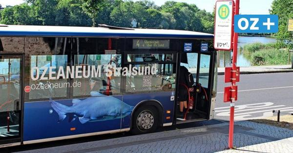 Frau im Stralsunder Bus schwer verletzt – das sagt die VVR