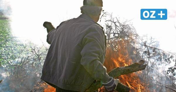 Verbrennen von Grünschnitt: Feuer in Stralsunder Kleingärten erhitzen die Gemüter
