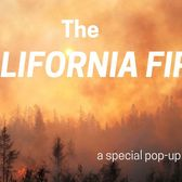 The California Fires