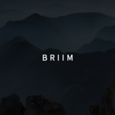 BRIIM - Machine Learning in JavaScript