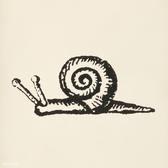Snail Snail