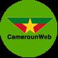 Camerounweb logo %283%29