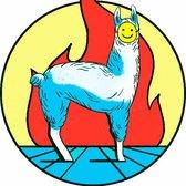 La Newsletter de La Llama