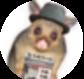 Possum Comitatus