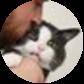 Michael's Cat