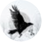 Crow & Cross Keys | SUBS OPEN