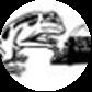 Flash Frog