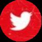 Twitter Türkiye